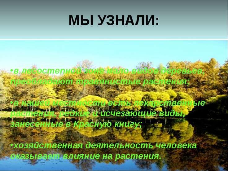 МЫ УЗНАЛИ: в лесостепной зоне мало видов деревьев, преобладают травянистые ра...
