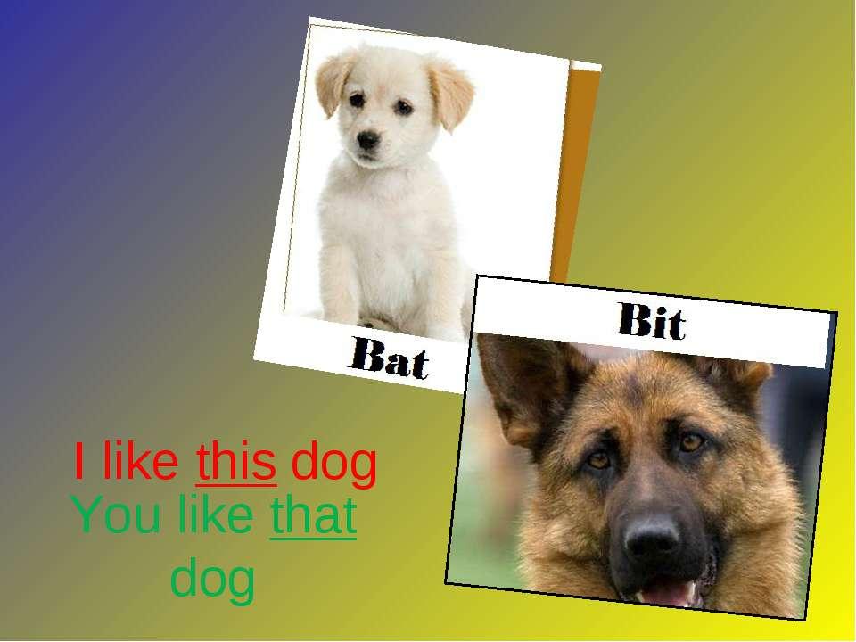 You like that dog I like this dog