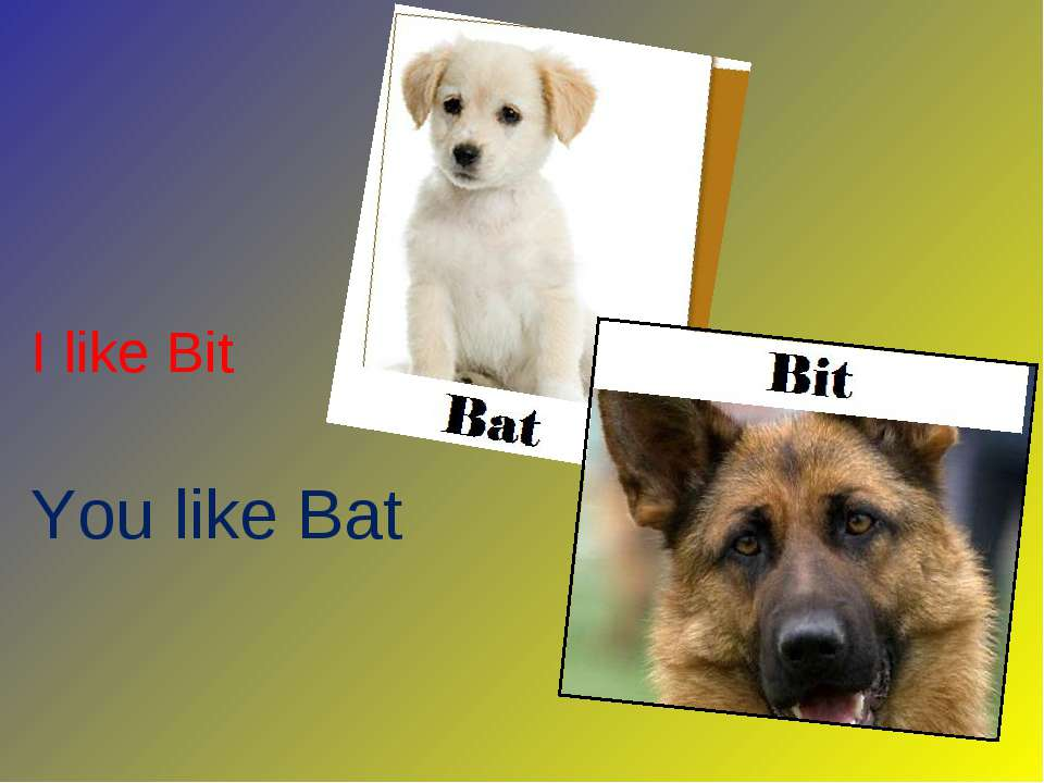I like Bit You like Bat