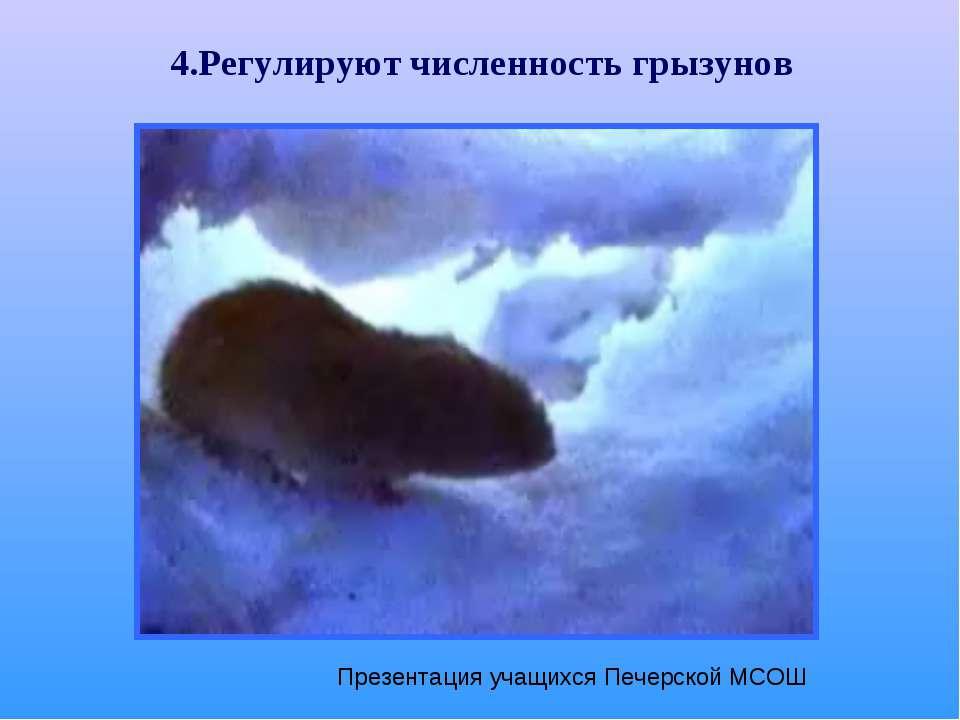 4.Регулируют численность грызунов