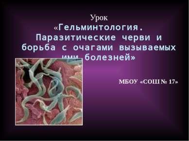МБОУ «СОШ № 17» Урок «Гельминтология. Паразитические черви и борьба с очагами...