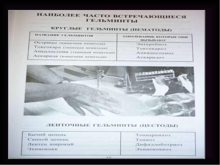 «Паразитов разделяют» Облигатные (обязательные) Факультативные (необязательны...