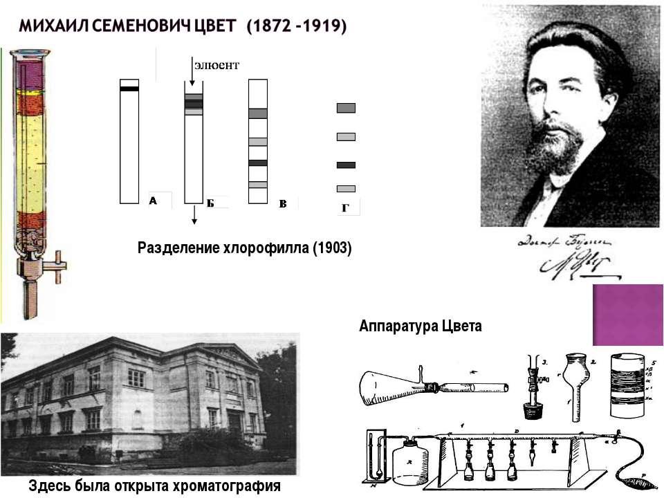 Разделение хлорофилла (1903) Здесь была открыта хроматография Аппаратура Цвета