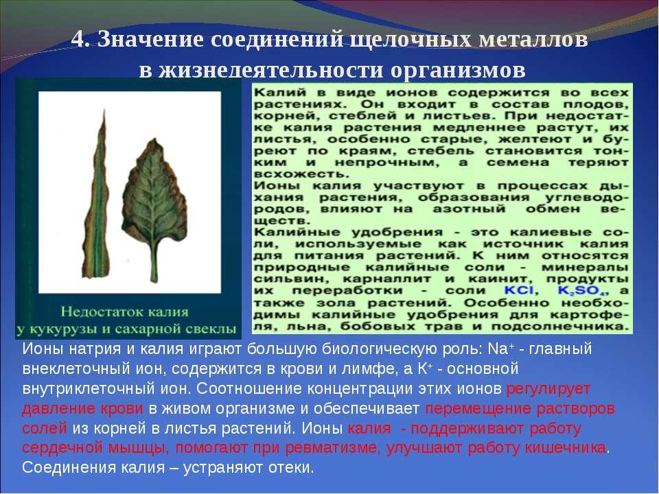 4. Значение соединений щелочных металлов в жизнедеятельности организмов Ионы ...