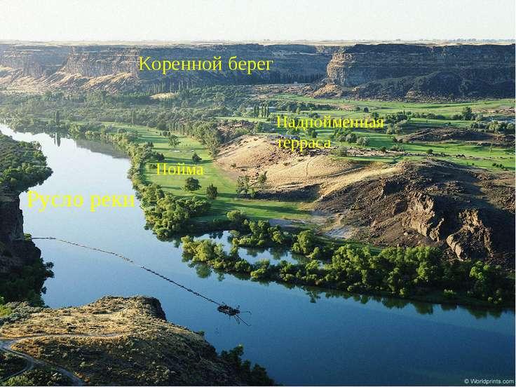 Русло реки Пойма Надпойменная терраса Коренной берег