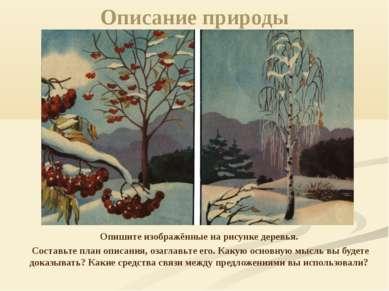 Описание природы Опишите изображённые на рисунке деревья. Составьте план опис...