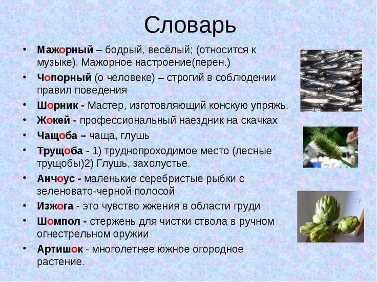 Словарь Мажорный – бодрый, весёлый; (относится к музыке). Мажорное настроение...