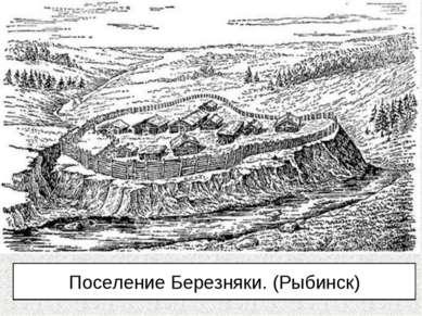 Поселение Березняки. (Рыбинск)