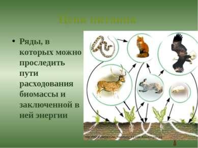 Цепи питания Ряды, в которых можно проследить пути расходования биомассы и за...