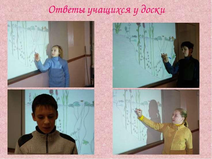 Ответы учащихся у доски