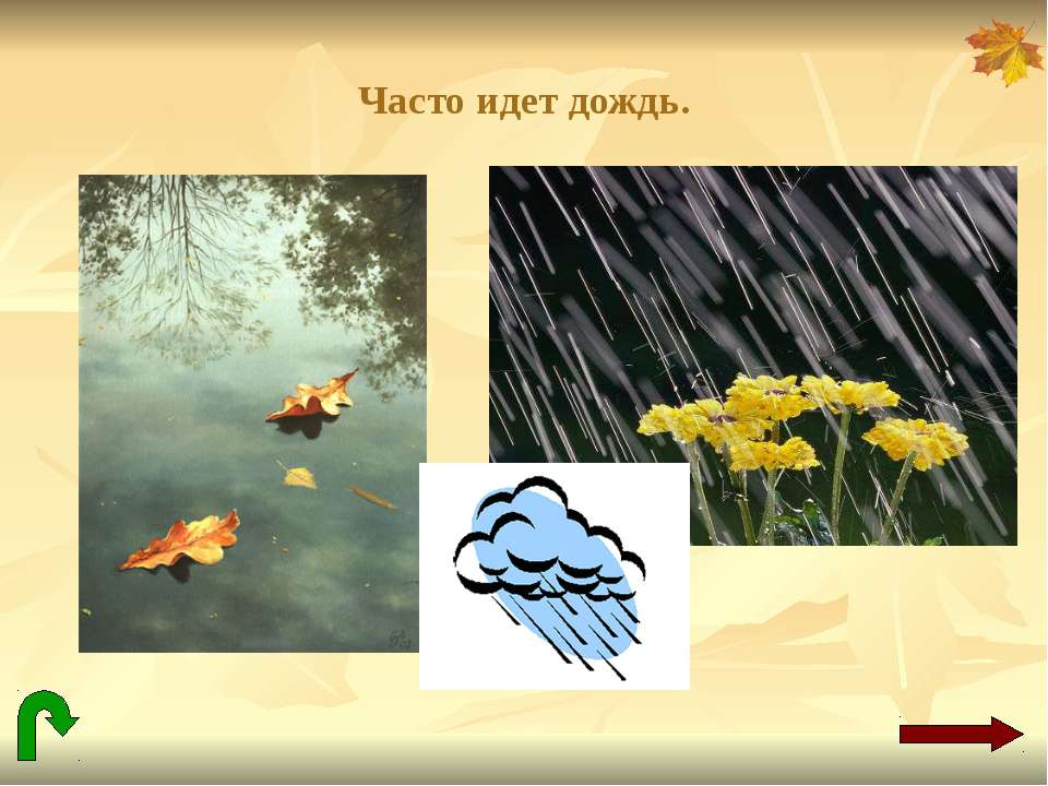 Часто идет дождь.