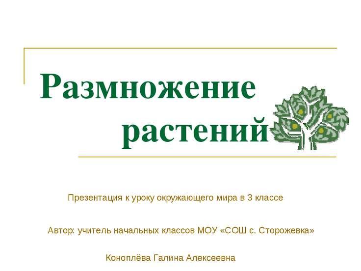 Размножение растений Презентация к уроку окружающего мира в 3 классе Автор: у...