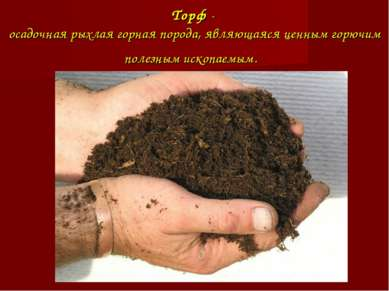Торф- осадочная рыхлая горная порода, являющаяся ценным горючим полезным иск...