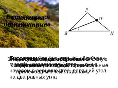 Биссектриса треугольника Биссектри са(отлат.bi-«двойное», иsectio«разре...