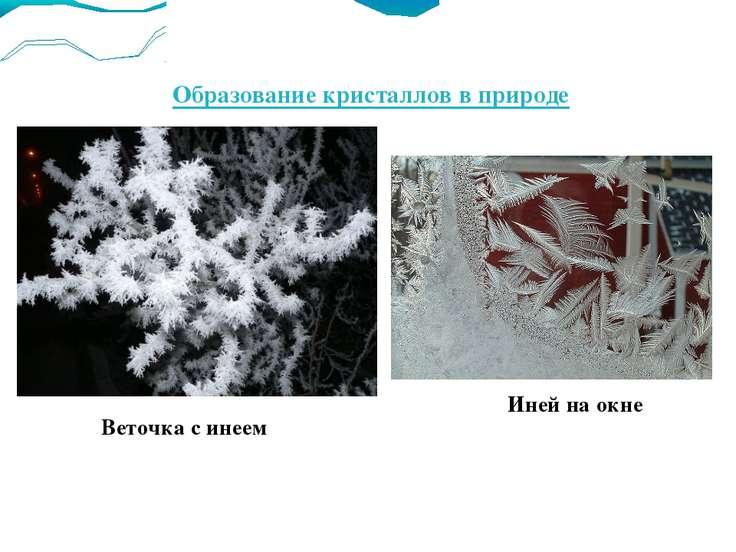 Образование кристаллов в природе Веточка с инеем Иней на окне