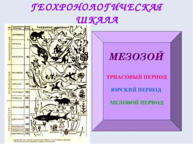 ГЕОХРОНОЛОГИЧЕСКАЯ ШКАЛА МЕЗОЗОЙ ТРИАСОВЫЙ ПЕРИОД ЮРСКИЙ ПЕРИОД МЕЛОВОЙ ПЕРИОД К