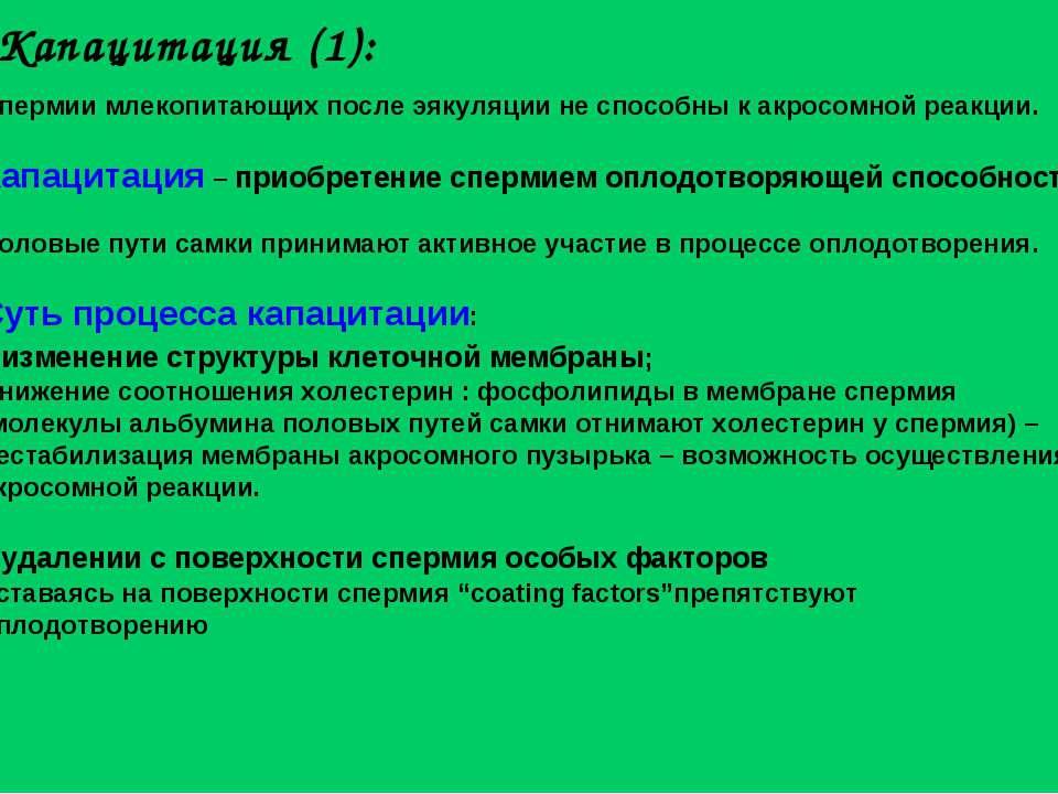 Капацитация (1): Спермии млекопитающих после эякуляции не способны к акросомн...