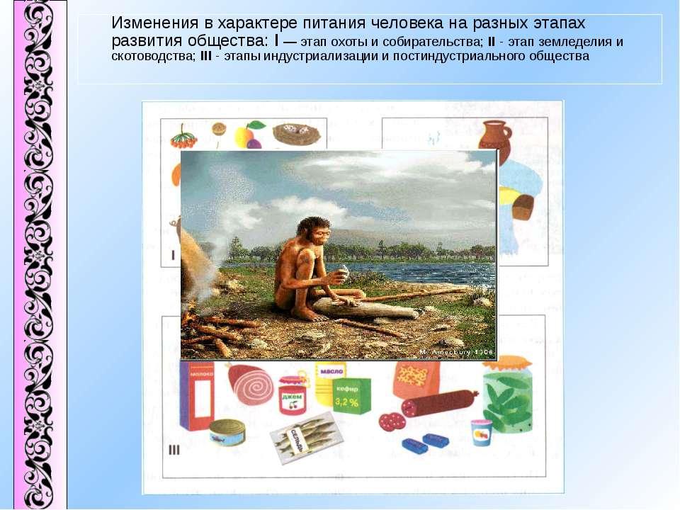 Изменения в характере питания человека на разных этапах развития общества: I ...