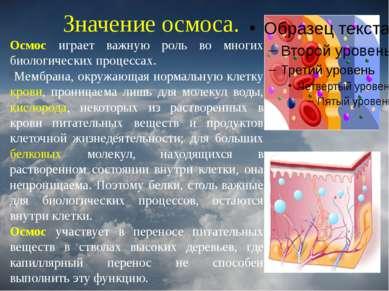 Значение осмоса. Осмос играет важную роль во многих биологических процессах. ...