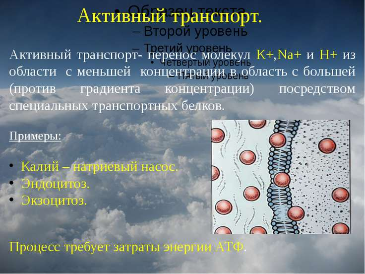 Активный транспорт. Активный транспорт- перенос молекул К+,Na+ и Н+ из област...