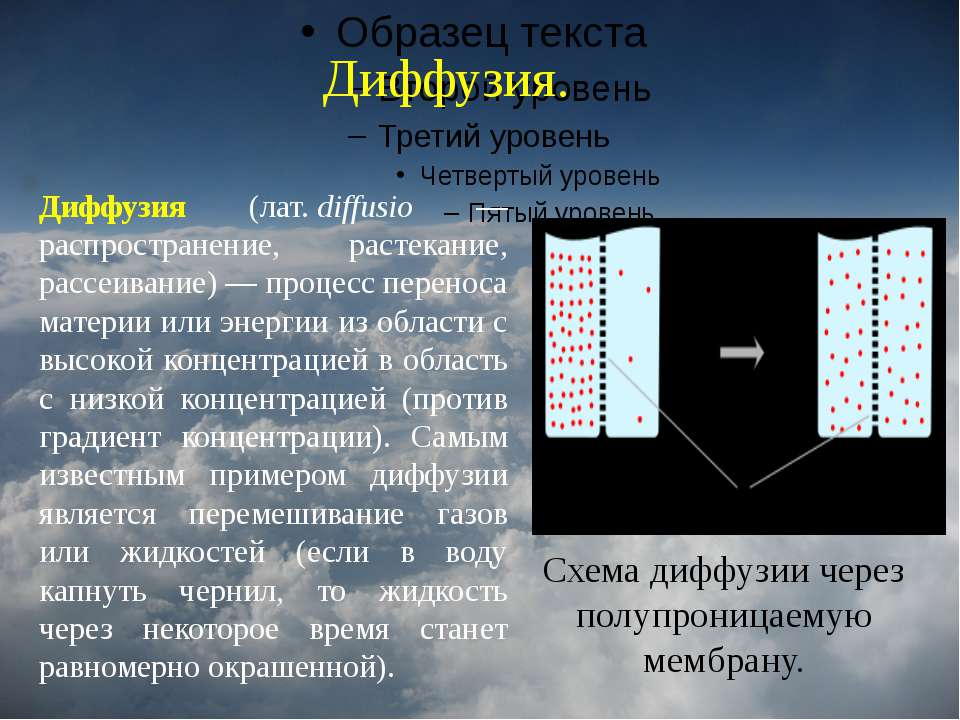Диффузия. Диффузия. Схема диффузии через полупроницаемую мембрану. Диффузия (...