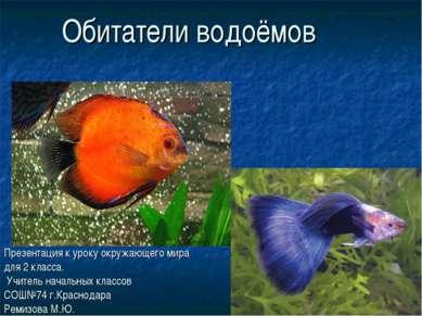 Обитатели водоёмов Презентация к уроку окружающего мира для 2 класса. Учитель...