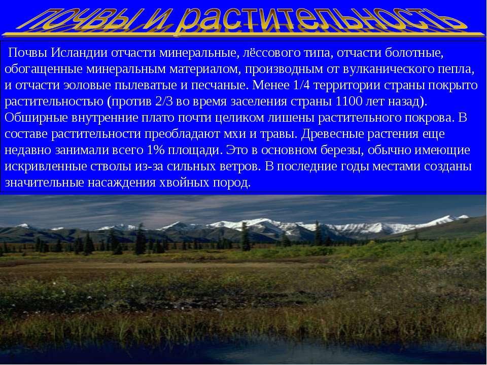 Почвы Исландии отчасти минеральные, лёссового типа, отчасти болотные, обогаще...