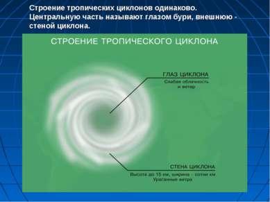 Строение тропических циклонов одинаково. Центральную часть называют глазом бу...