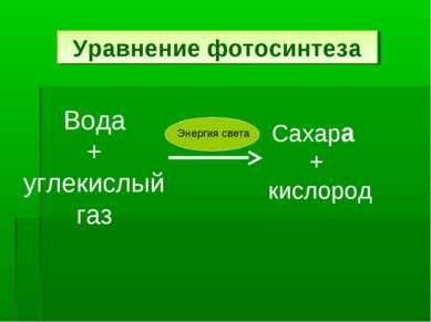 Уравнение фотосинтеза Вода + углекислый газ Сахара + кислород