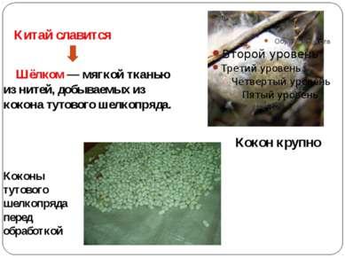 Китай славится Шёлком— мягкой тканью из нитей, добываемых из кокона тутового...