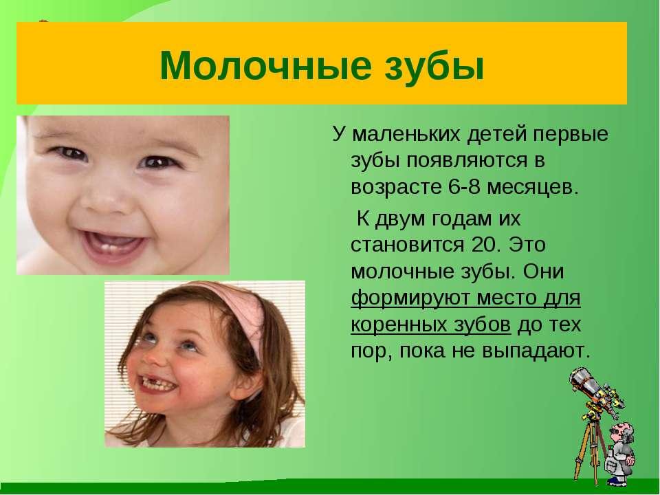 Молочные зубы У маленьких детей первые зубы появляются в возрасте 6-8 месяцев...