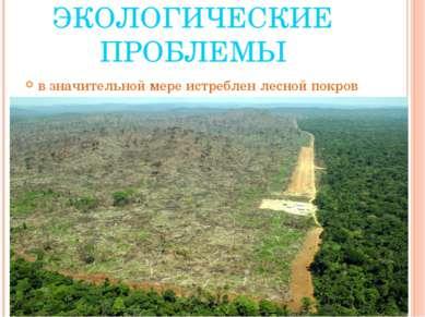 ЭКОЛОГИЧЕСКИЕ ПРОБЛЕМЫ в значительной мере истреблен лесной покров