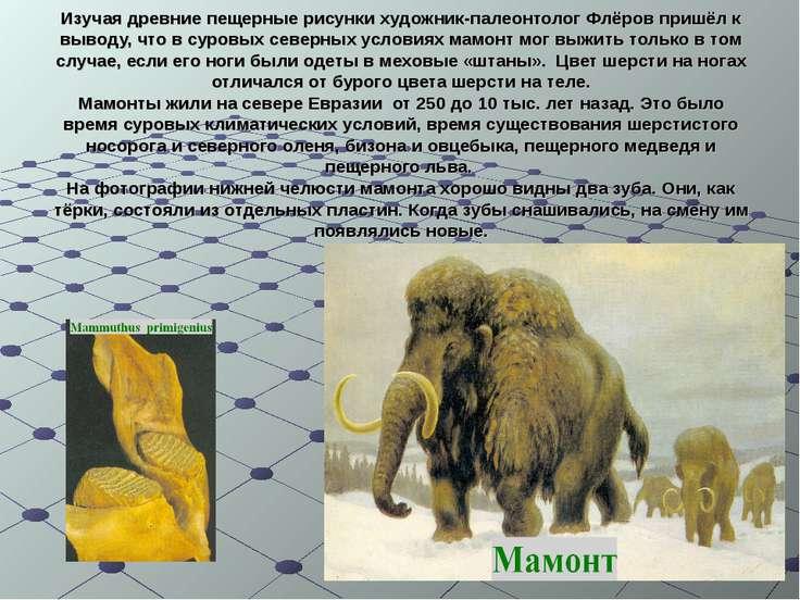 Изучая древние пещерные рисунки художник-палеонтолог Флёров пришёл к выводу, ...