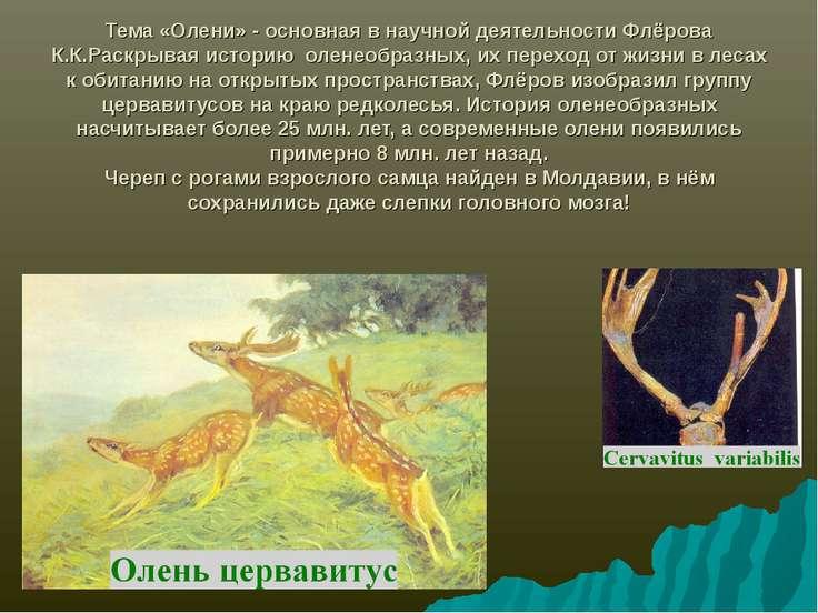 Тема «Олени» - основная в научной деятельности Флёрова К.К.Раскрывая историю ...