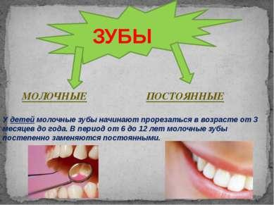 У детей молочные зубы начинают прорезаться в возрасте от 3 месяцев до года. В...