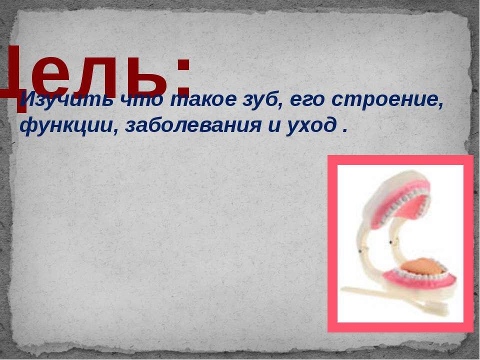 Цель: Изучить что такое зуб, его строение, функции, заболевания и уход .