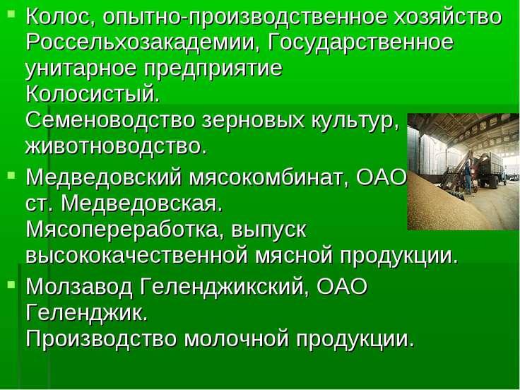 Колос, опытно-производственное хозяйство Россельхозакадемии, Государственное ...