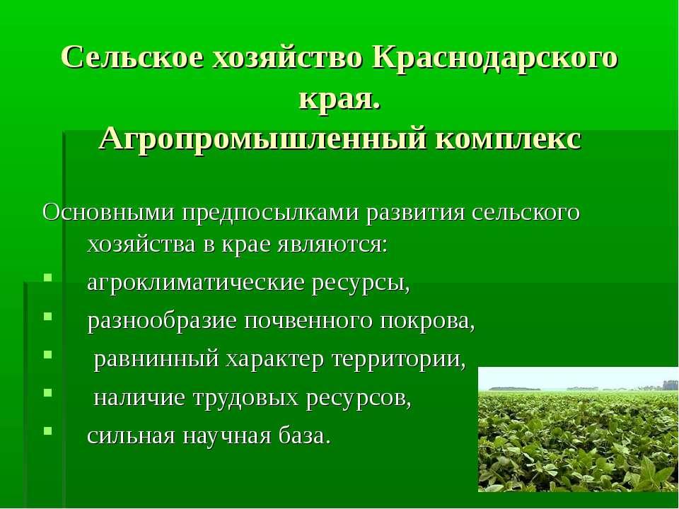 Сельское хозяйство Краснодарского края. Агропромышленный комплекс Основными п...