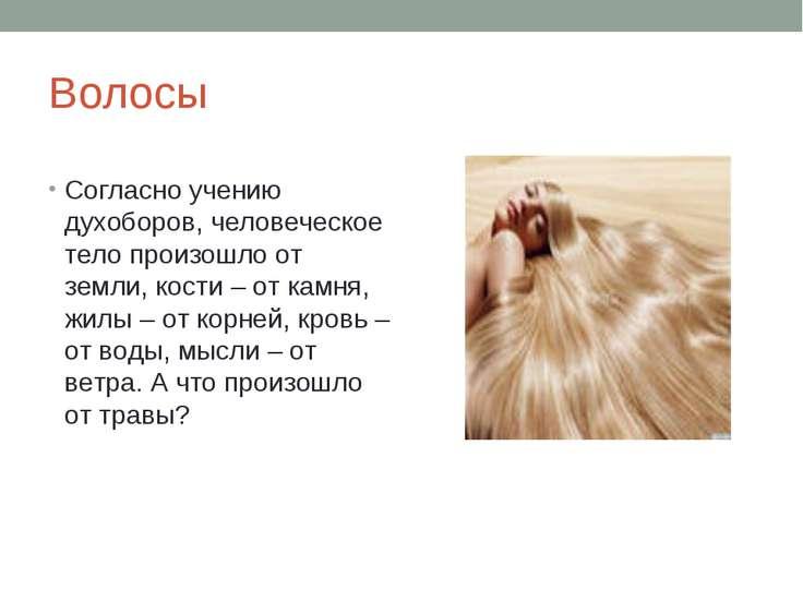 Волосы Согласно учению духоборов, человеческое тело произошло от земли, кости...
