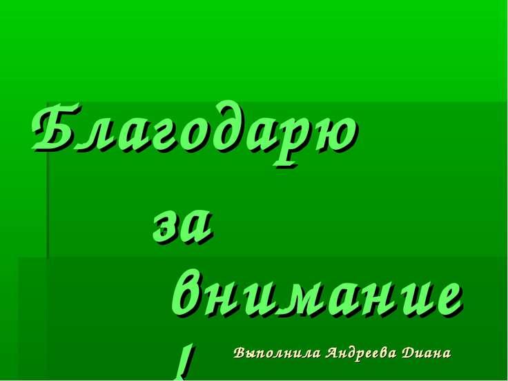 Выполнила Андреева Диана Благодарю за внимание!