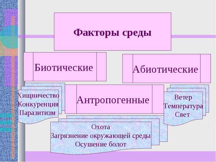 Факторы среды Биотические Антропогенные Абиотические Хищничество Конкуренция ...