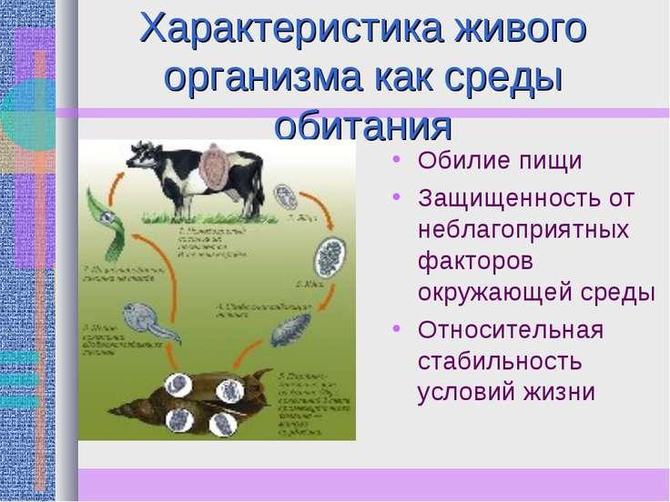 Характеристика живого организма как среды обитания Обилие пищи Защищенность о...
