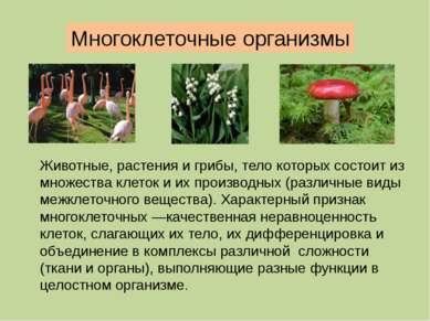 Следует отличать многоклеточность и колониальность. У колониальных организмов...