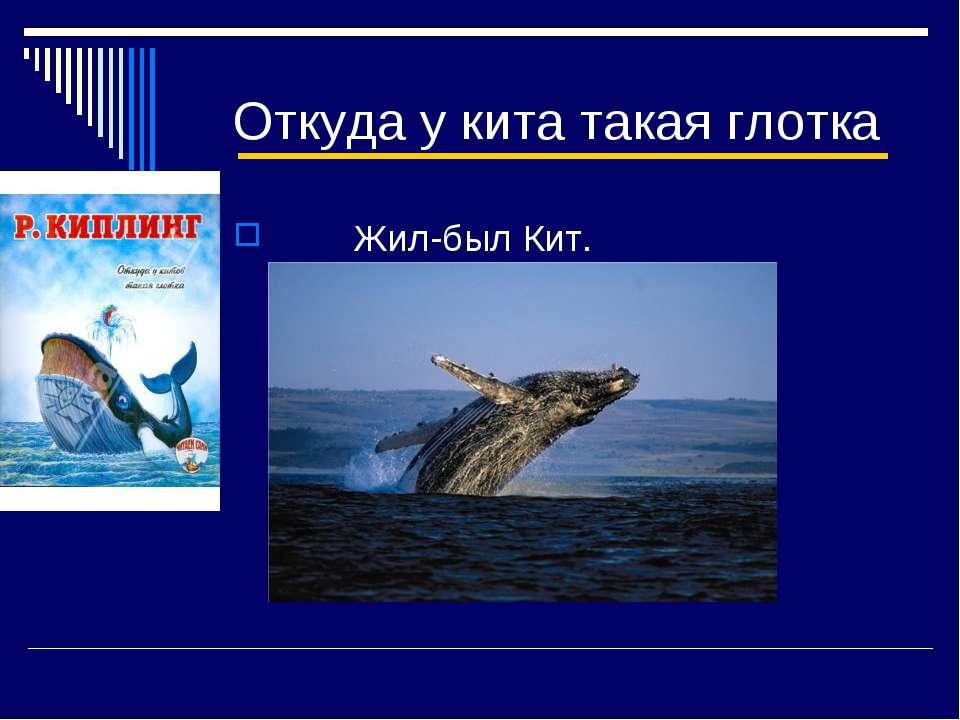 Откуда у кита такая глотка Жил-был Кит.