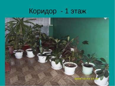 Коридор - 1 этаж