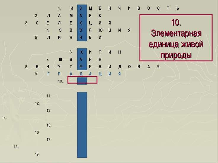 10. Элементарная единица живой природы 1. И З М Е Н Ч И В О С Т Ь...