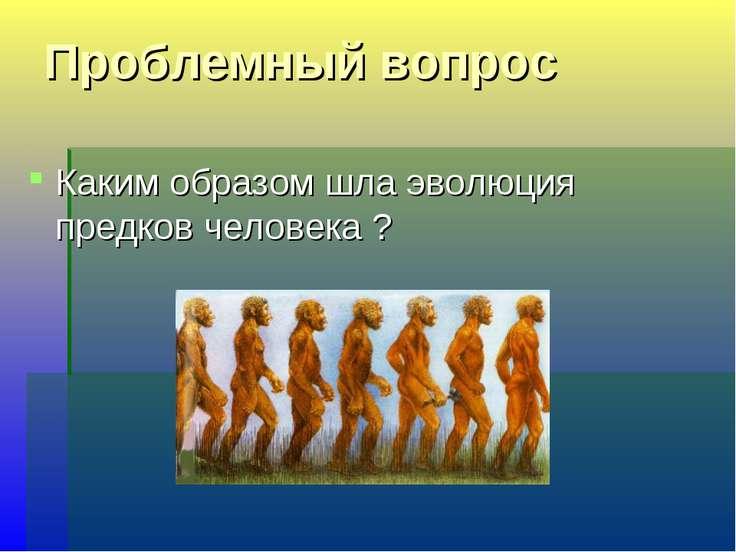 Проблемный вопрос Каким образом шла эволюция предков человека ?