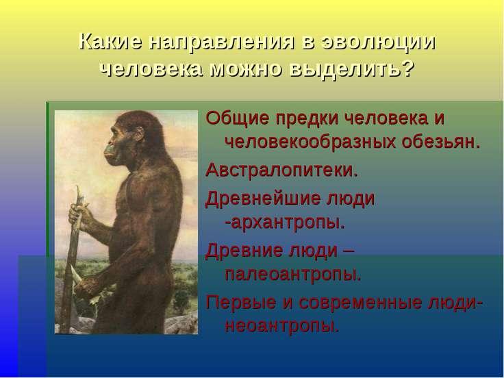 Какие направления в эволюции человека можно выделить? Общие предки человека и...