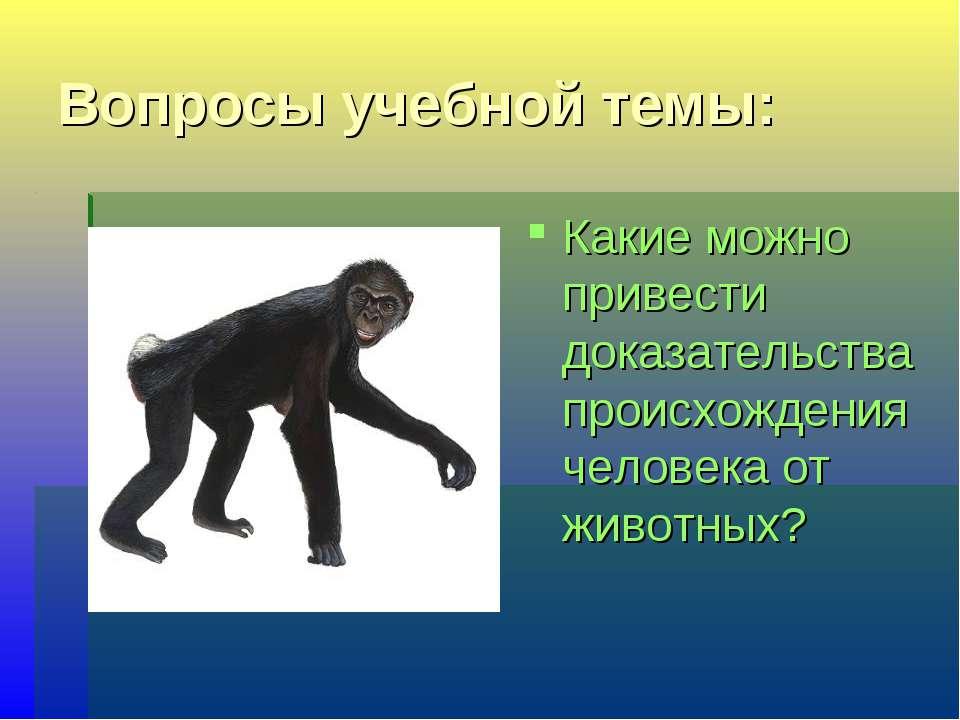 Вопросы учебной темы: Какие можно привести доказательства происхождения челов...