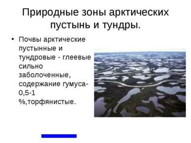 Природные зоны арктических пустынь и тундры. Почвы арктические пустынные и ту...